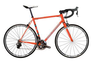 Washoe, LeMond biciclette