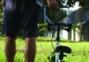 Maghik bici bambino