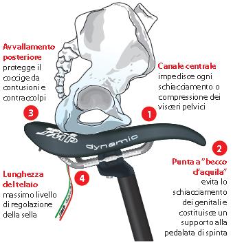 come proteggere la prostata dalla sella della bici da corsa la
