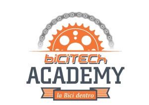 BICacademy_logo Test (2)