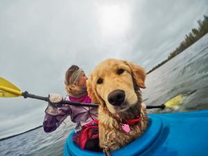 Awards Dog Kayak