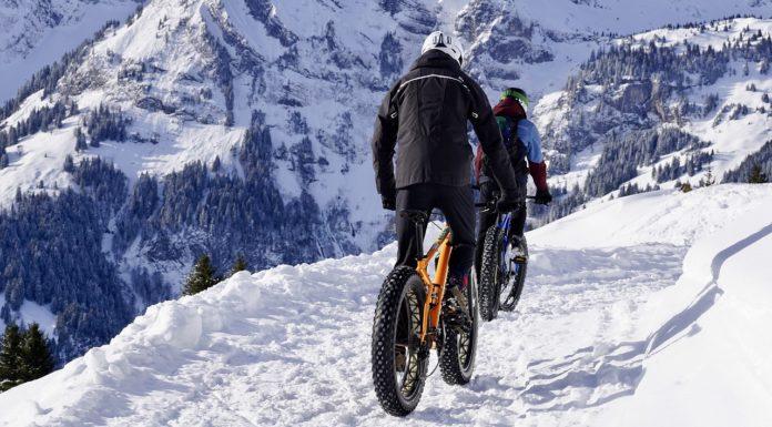 guide alpine bike alpinism